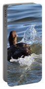Red Head Duck Resurfaces With A Splash Portable Battery Charger