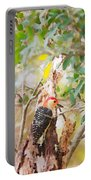 Red Headed Woodpecker Portable Battery Charger