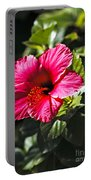 Red Hibiscus Portable Battery Charger by Robert Bales