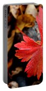 Red Hot Portable Battery Charger