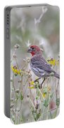 Red House Finch In Flowers Portable Battery Charger
