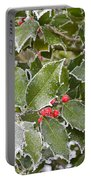 Red In Winter Portable Battery Charger
