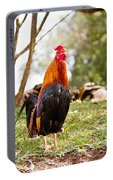 Red Jungle Fowl - Moa Portable Battery Charger