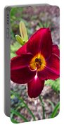 Red Lady Lily 2 Portable Battery Charger