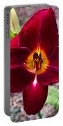 Red Lady Lily 4 Portable Battery Charger