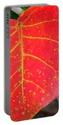 Red Leaf With Yellow Veins Portable Battery Charger