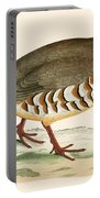 Red Legged Partridge Portable Battery Charger