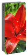 Red Lily 2 Portable Battery Charger