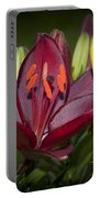 Red Lily 6 Portable Battery Charger