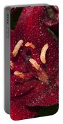 Red Lily Raindrops Portable Battery Charger