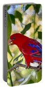 Red Lory Portable Battery Charger