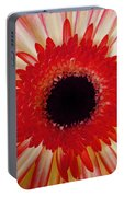 Red  Macro Daisy  Portable Battery Charger