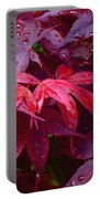 Red Maple After Rain Portable Battery Charger