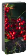 Red Nandina Berries - The Heavenly Bamboo Portable Battery Charger