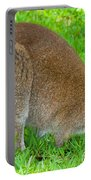 Red Necked Wallaby Portable Battery Charger