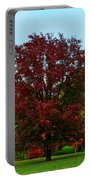 Red Oak In Loose Park Portable Battery Charger