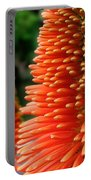 Red-orange Flower Of Eremurus Ruiter-hybride Portable Battery Charger
