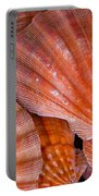 Red Orange Sea Shells Portable Battery Charger