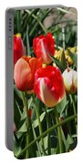Red Orange Tulip Flowers Art Prints Portable Battery Charger