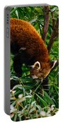 Red Panda Tree Climb Portable Battery Charger