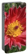 Red Pasque Flower Portable Battery Charger