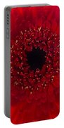 Red Petal Macro 3 Portable Battery Charger