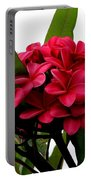 Red Plumeria Portable Battery Charger