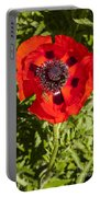 Red Poppy And Bee Portable Battery Charger