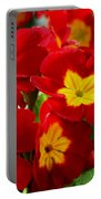 Red Primroses Portable Battery Charger