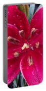 Red Refreshed Lily Portable Battery Charger