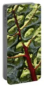 Red River Through Green Hills Portable Battery Charger