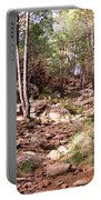 Red Rock Pine Forest Portable Battery Charger
