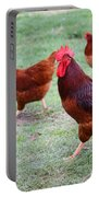 Red Rooster And Hens Portable Battery Charger