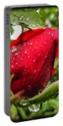 Red Rose Bud With Water Drops Portable Battery Charger
