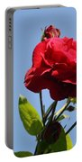 Red Roses With Blue Sky Background Portable Battery Charger
