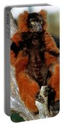 Red-ruffed Lemur Portable Battery Charger