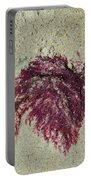 Red Seaweed Portable Battery Charger