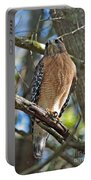 Red-shouldered Hawk On Branch Portable Battery Charger