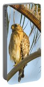 Red-shouldered Hawk On The Palm Tree Portable Battery Charger