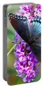 Red Spotted Purple Butterfly On Butterfly Bush Portable Battery Charger
