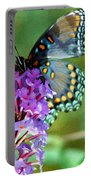 Red Spotted Purple Butterfly Photopainting Portable Battery Charger