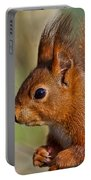 Red Squirrel 2 Portable Battery Charger