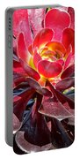 Red Succulent Plant Portable Battery Charger