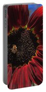 Red Sun Honey Portable Battery Charger