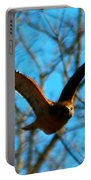 Red Tail Hawk In Flight Portable Battery Charger