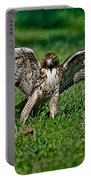 Red-tailed Hawk & Gopher Snake Portable Battery Charger