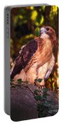 Red Tailed Hawk - 53 Portable Battery Charger