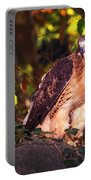 Red Tailed Hawk - 54 Portable Battery Charger