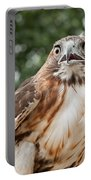 Red-tailed Hawk Square Portable Battery Charger by Bill Wakeley