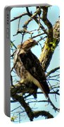 Red Tailed Interest Portable Battery Charger